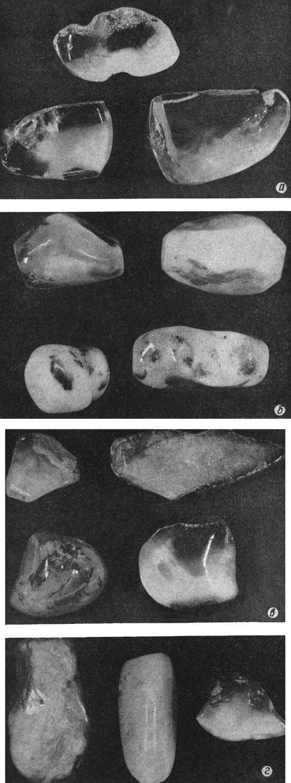 Рис. 2. Сочетание разностей янтаря: а - прозрачного, дымчатого. Приморское месторождение; б - костяного и полупрозрачного. Приморское месторождение; в - полупрозрачного и дымчатого. Клесовское месторождение; г - костяного и полупрозрачного. Проявления Львовской области
